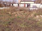 ЖК Новиков - ход строительства, фото 81, Октябрь 2019